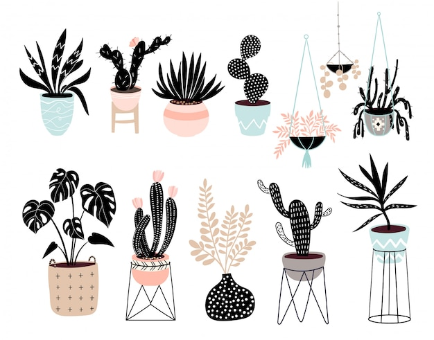 Hand drawn house plants collection with different tropical plants isolated