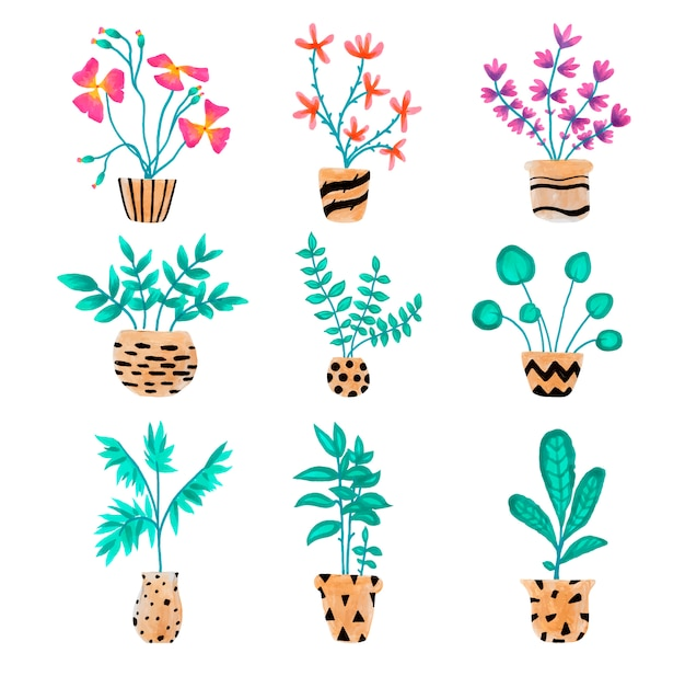 손으로 그린 하우스 식물