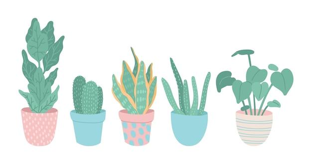 손으로 그린 된 houseplant 컬렉션 일러스트