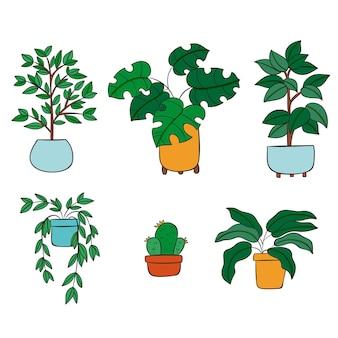 Коллекция рисованной комнатных растений