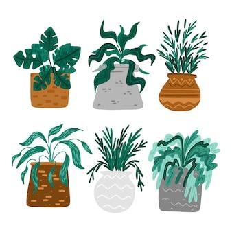 Collezione di piante d'appartamento disegnate a mano