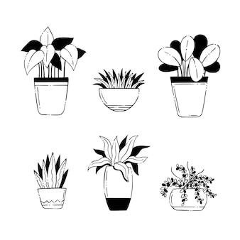 手描き観葉植物コレクション