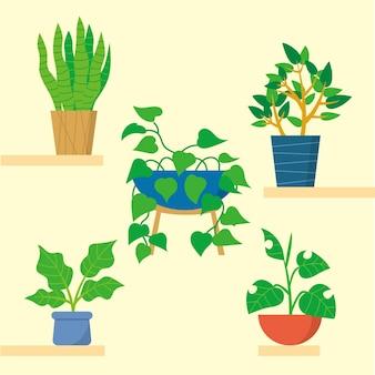 냄비 컬렉션에 손으로 그린 houseplants