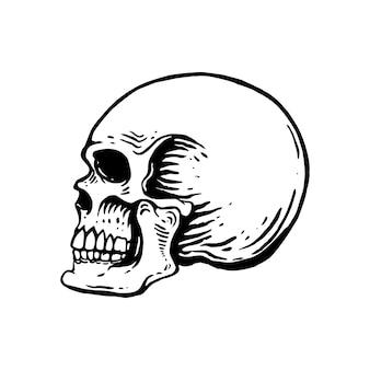 白い背景の上の手描きの人間の頭蓋骨のイラスト。ロゴ、ラベル、エンブレム、サイン、ポスター、tシャツの要素。画像