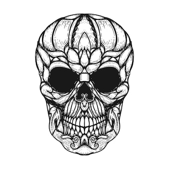 Hand drawn human skull made floral shapes.