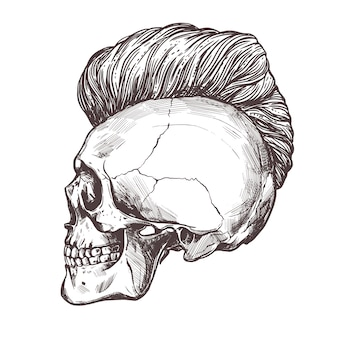 Hand drawn human skull with trendy haircut in the profile.