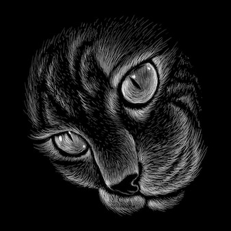 Hand drawn illustration in chalk style of cat