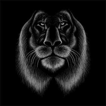 Hand drawn illustration in chalk style of lion