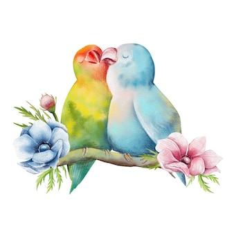 앵무새의 사랑스러운 커플의 손으로 그린 그림