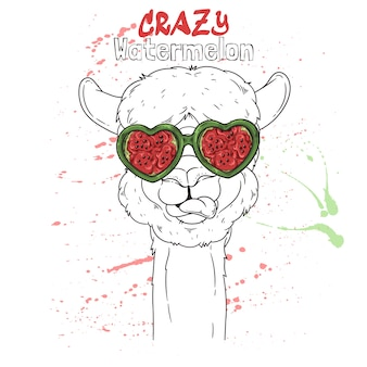 Hand drawn illustration. portrait of cute alpaca in watermelon effect glasses.