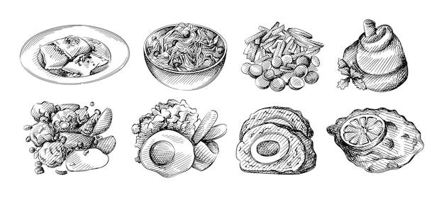 ヒマワリとヒマワリの種の手描きイラストセット。