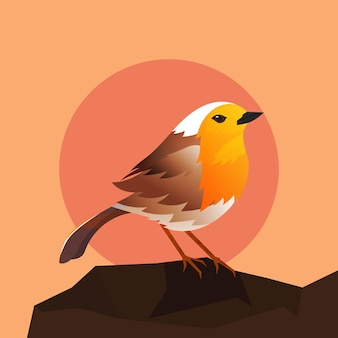 Hand drawn illustration species bird exotic color in the world