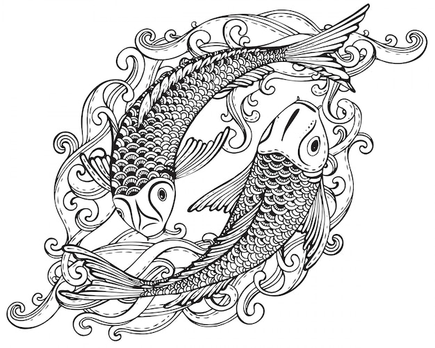 Hand drawn illustration of two koi fishes (japanese carp)