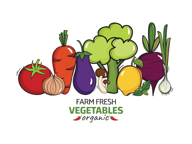 Hand drawn illustration with vector organic vegetables