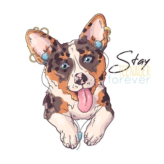 Hand drawn illustrations. portrait of cute corgi dog listening music