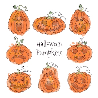 Hand drawn illustrations of realistic pumpkin for halloween