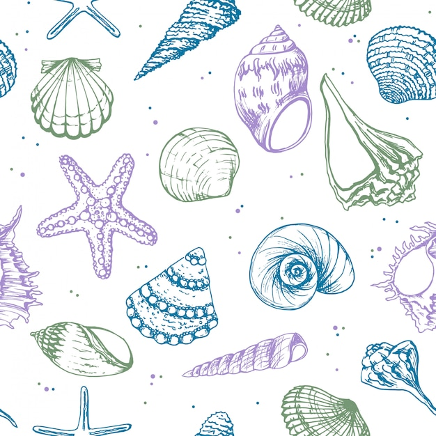 Hand drawn illustrations - seamless pattern of seashells.