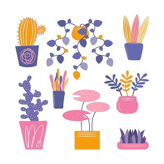 Hand drawn indoor decorative houseplants isolated on a white background. set of flowers, cactus and succulent in a pot for beautiful natural home decorations. flat colorful  illustration.