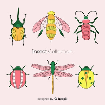 Hand drawn insect collection