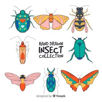 손으로 그린 곤충 컬렉션