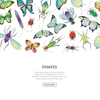 Hand drawn insects colored banner web