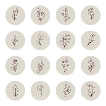 Рисованной истории instagram с минимальным цветочным листом, цветком, веткой. каракули эскиз стиля.