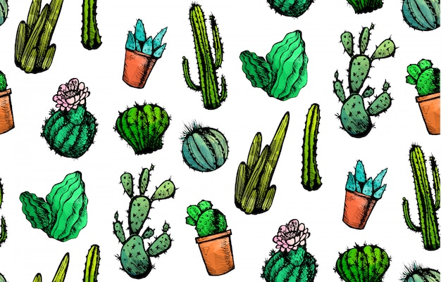 Hand drawn isolated cactuses seamless pattern. cactus ornament