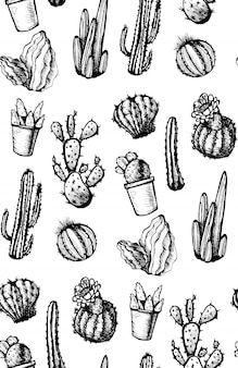 Hand drawn isolated cactuses seamless pattern