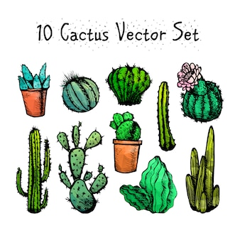 Hand drawn isolated cactuses set
