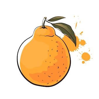 손으로 그린 한국 harnabong 오렌지