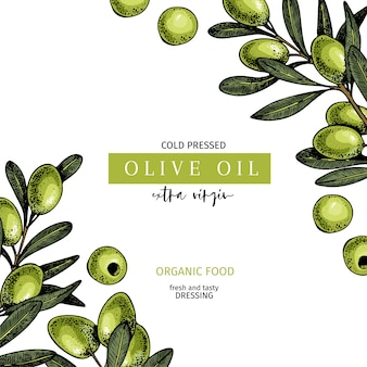 Hand drawn label of extra virgin olive oil