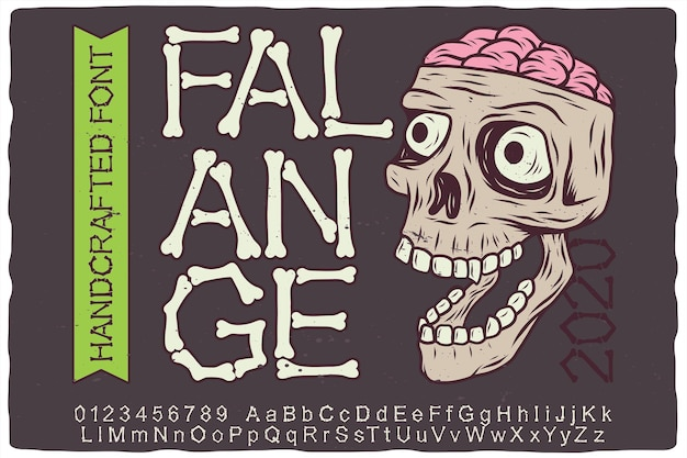 Hand drawn label font and skull