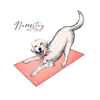 손으로 그린 된 래브라도 리트리버 강아지 요가 매트에 놓여 있습니다. 집에있어 라.