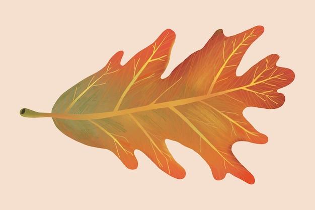 Hand drawn leaf element vector autumn white oak