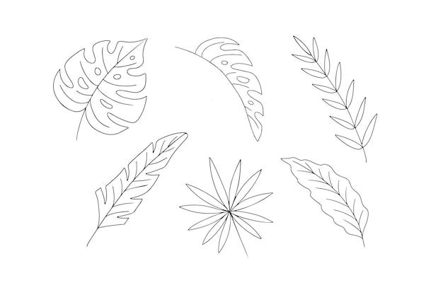 手描きの葉と花のコレクションは、要素を分離しました。ベクトルイラスト