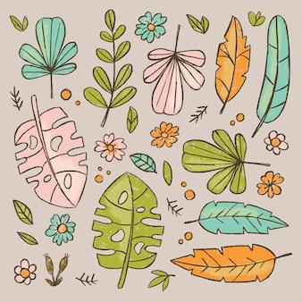 Hand drawn leaves botanic herbarium