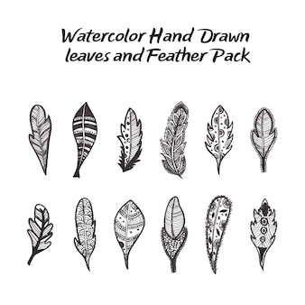Hand drawn leaves and feathers collection