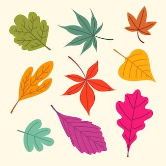 Illustrazione di foglie disegnate a mano