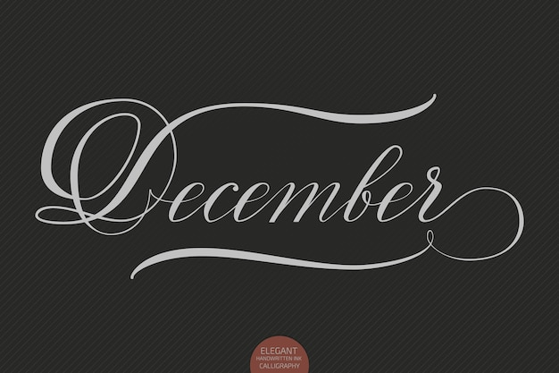 Hand drawn lettering december. elegant modern handwritten calligraphy. vector ink illustration.