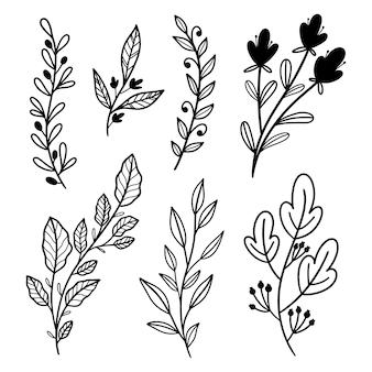 손으로 그린 라인 아트 잎 요소 벡터 컬렉션