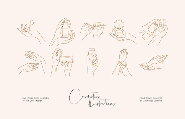 Hand drawn line art vector logo design template boho style illustration of elegant signs and badges