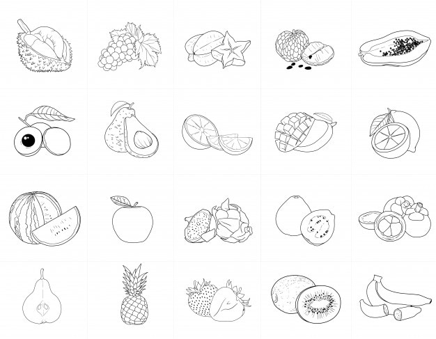 Hand drawn line vector of fruits