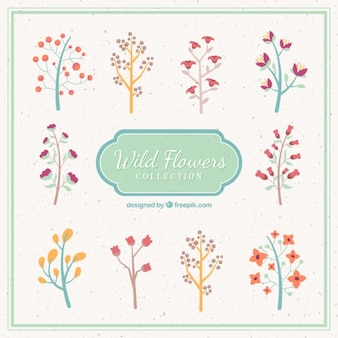 Hand drawn little limbs with flowers pack