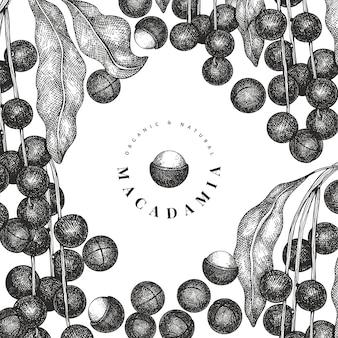 손으로 그린 된 마카다미아 지점 및 커널 디자인 서식 파일. 흰색 바탕에 유기농 식품 벡터 일러스트입니다. 빈티지 너트 그림입니다. 새겨진 스타일 식물 배너.