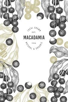손으로 그린 된 마카다미아 지점 및 커널 템플릿입니다. 흰색 바탕에 유기농 식품 그림입니다. 레트로 너트 그림입니다. 새겨진 스타일 식물 배너.