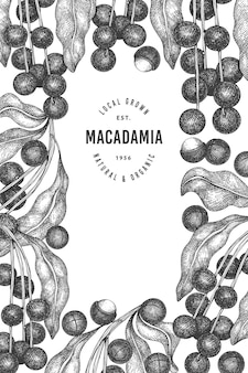 Hand drawn macadamia branch and kernels design template.