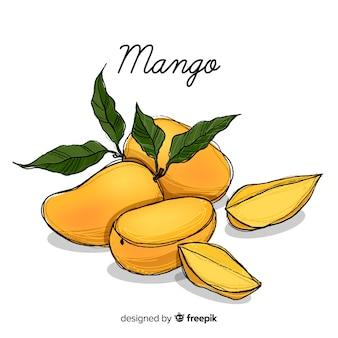 Hand drawn mango illustration
