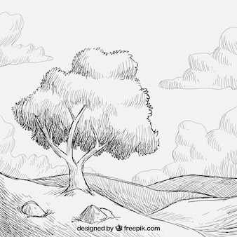 Hand drawn meadow
