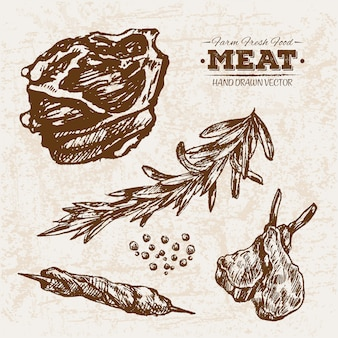 Hand drawn meat products collection with rosemary