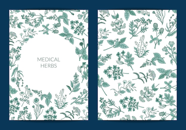 Hand drawn medical herbs card or flyer template